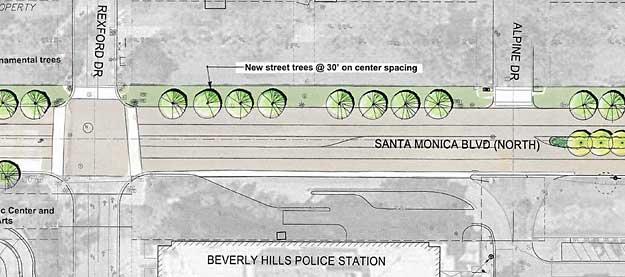 Santa Monica trees site plan