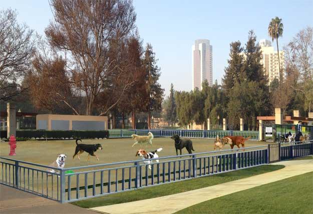 Roxbury dog park visualization
